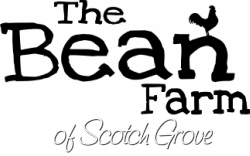 The Bean Farm of Scotch Grove